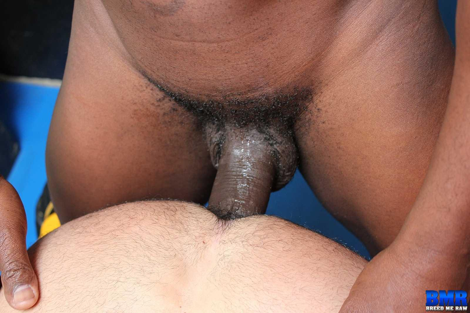 Sex interracial raw
