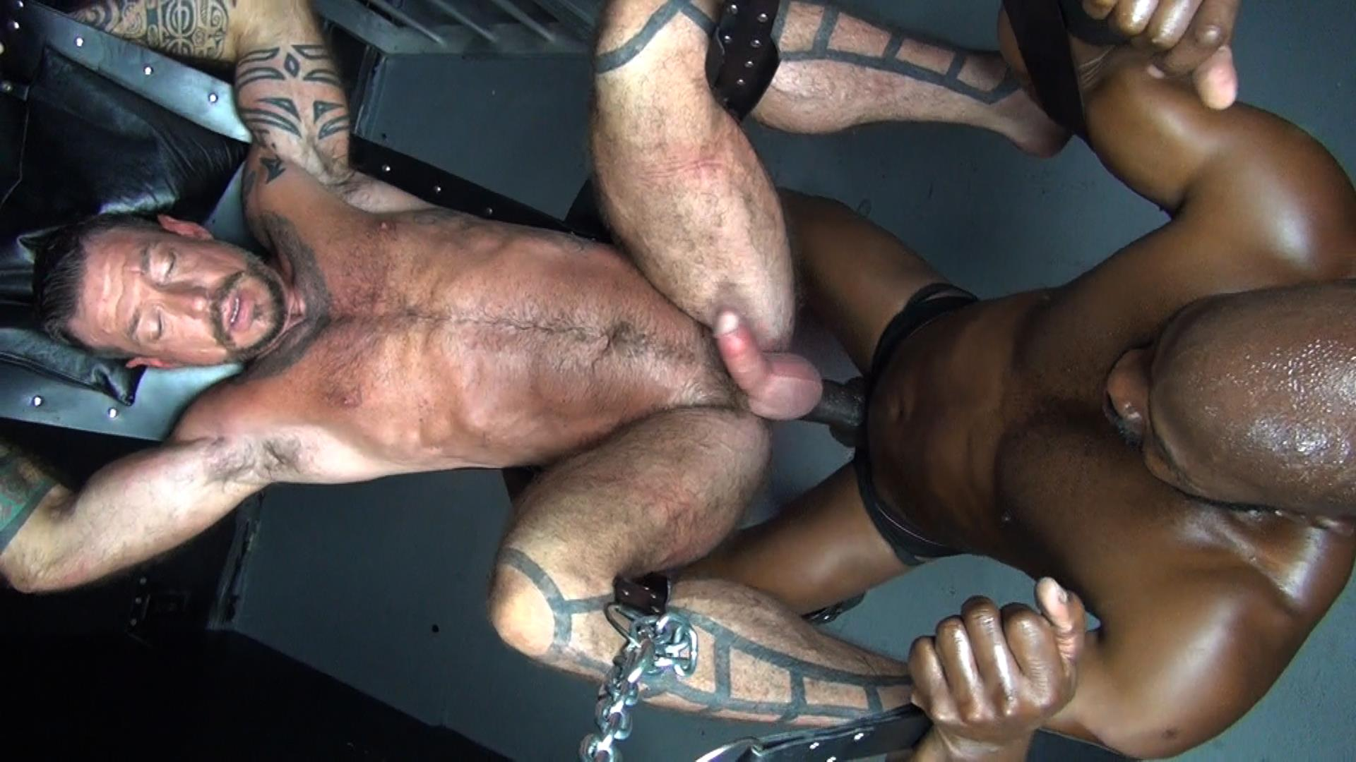 from Clyde gay muscle cock sex